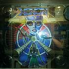 Diving into the Past, A Pinball Survival Story