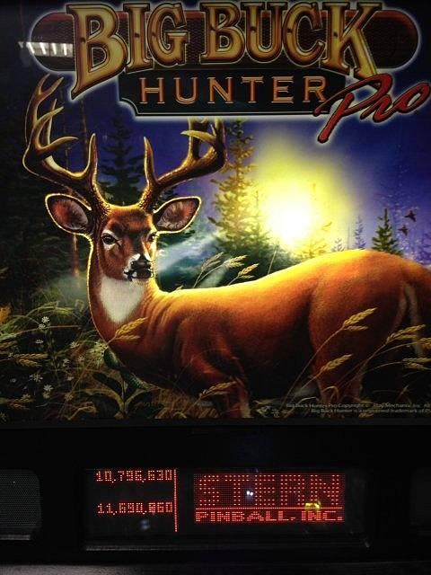big buck pinball machine