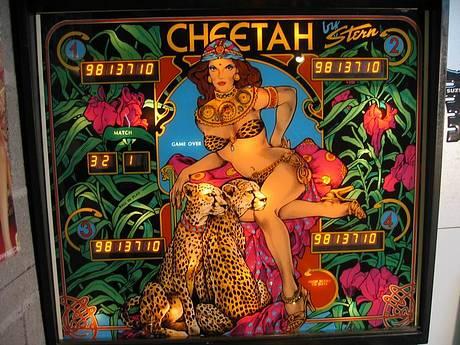 #56: Cheetah